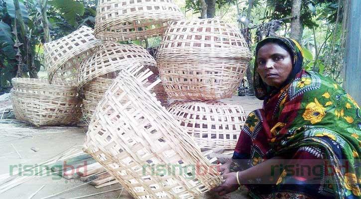 বাঁশের খাঁচায় অভাব ঘুচিয়েছেন হবিগঞ্জের রাবেয়া