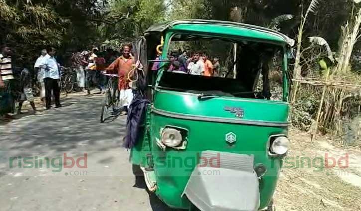 ঠাকুরগাঁওয়ে সড়ক দুর্ঘটনায় নানি-নাতনি নিহত