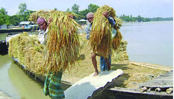 এল হেমন্তের দিন
