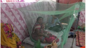 ঝিনাইদহে ৩৪ ডেঙ্গু রোগী চিকিৎসাধীন