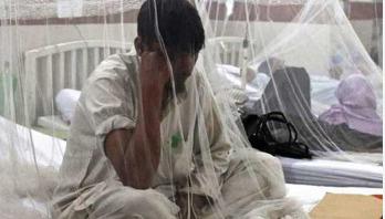 ডেঙ্গু: হাসপাতাল ছেড়েছেন সাড়ে ২৩ হাজার রোগী