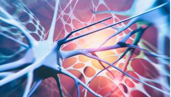Motor neurone disease 'linked to cholesterol'