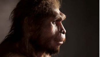 Ancient humans survived longer than we thought