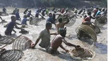 হেমন্তের শেষ দিনে কন্টিনালায় জমজমাট পলো উৎসব