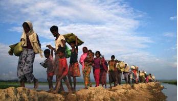 TIB finds no possibility to return Rohingyas