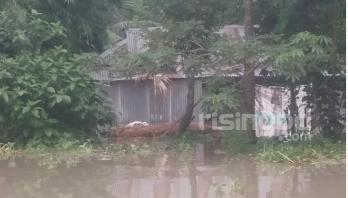 Flood situation worsens in Bogura
