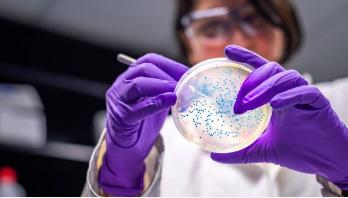 Drug-resistant superbug spreading in Europe's hospitals