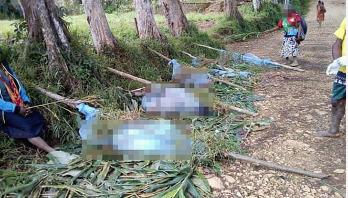 24 killed in Papua New Guinea tribal massacres
