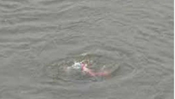 Minor drowns in Tangail pond