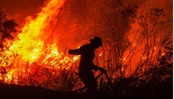 Indonesia forest fires spread smoke to neighboring countries