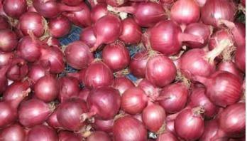 TCB selling onion at Tk 45 kg