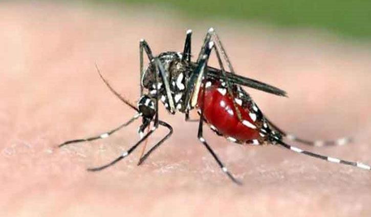 Youth dies of dengue