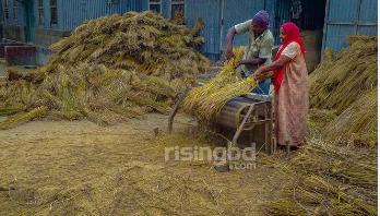 'কাম না করলে ভাত পামু কই'