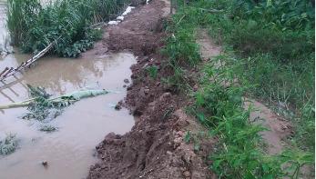 নদীগর্ভে রাস্তা: দুর্ভোগে পাঁচ সহস্রাধিক মানুষ