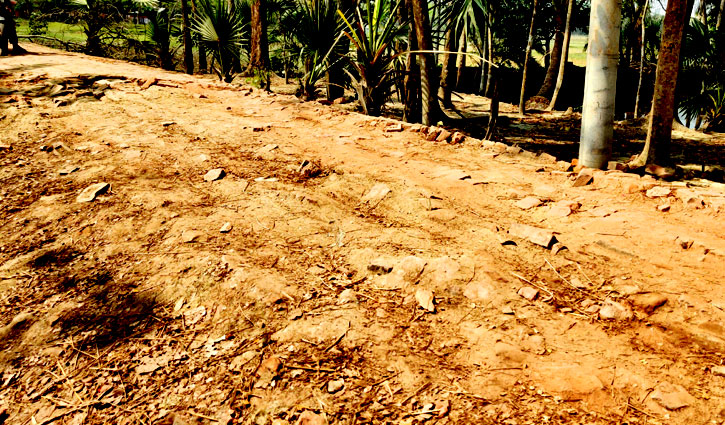 রাঙ্গাবালী থানা সংলগ্ন সড়কে সীমাহীন দুর্ভোগ