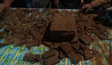 নরসিংদীতে মাটির নিচে মিললো ৩৪৬০টি গুলি