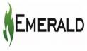 এমারেল্ড অয়েলকে উৎপাদনে ফেরাতে স্বতন্ত্র পরিচালক নিয়োগ