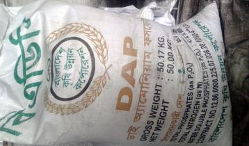 টাঙ্গাইলে অতিরিক্ত দামে সার বিক্রি: বিপাকে কৃষক
