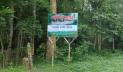 সাতছড়িতে গোলাবারুদের সন্ধানে অভিযানে বিজিবি