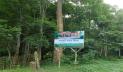 ৮ মাস পর খুলছে সাতছড়ি জাতীয় উদ্যান