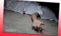 মানিকগঞ্জে মোটরসাইকেল দুর্ঘটনায় এনজিওকর্মী নিহত