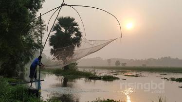 প্রকৃতির পালাবদলে এখন হেমন্ত