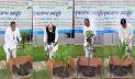 মুজিববর্ষ উপলক্ষে সংসদ চত্বরে গাছের চারা রোপণ করলেন ৪ এমপি