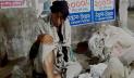শীতের প্রকোপে সিরাজগঞ্জের ছিন্নমূল মানুষ