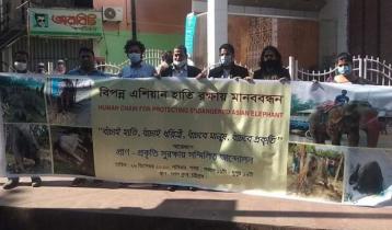 বিপন্ন এশিয়ান হাতি রক্ষায় চট্টগ্রামে মানববন্ধন