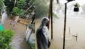 রংপুরে ২৬৭ মিলিমিটার বৃষ্টি, পানিবন্দি হাজারো মানুষ