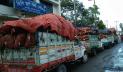 একমাসে হিলি দিয়ে দেশে এলো ১১০০ মেট্রিকটন কাঁচা মরিচ