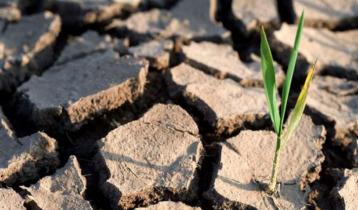 বৈশ্বিক জলবায়ু পরিবর্তন: জাতিসংঘের লক্ষ্যমাত্রা অর্জনের পথে