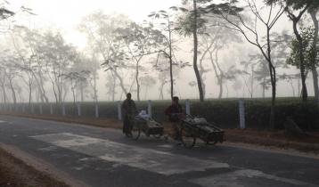 দু'দিন ধরে দেশের সর্বনিম্ন তাপমাত্রা শ্রীমঙ্গলে