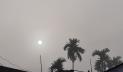 শ্রীমঙ্গলে দেশের সর্বনিম্ন তাপমাত্রা, বইছে মৃদু শৈত্যপ্রবাহ
