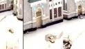 মক্কায় মসজিদুল হারামের গেটে গাড়ি দুর্ঘটনা, চালক আটক