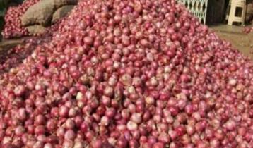 হিলিতে পেঁয়াজের দাম বেড়েছে কেজিতে ১৫ টাকা