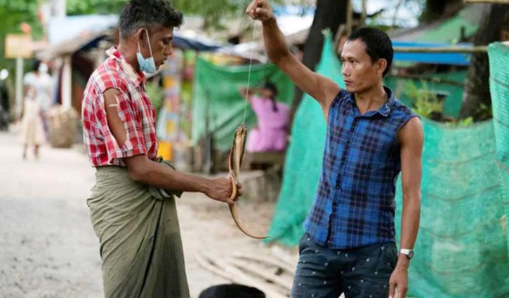 ইঁদুর-সাপ খাচ্ছে মিয়ানমারের বাসিন্দারা