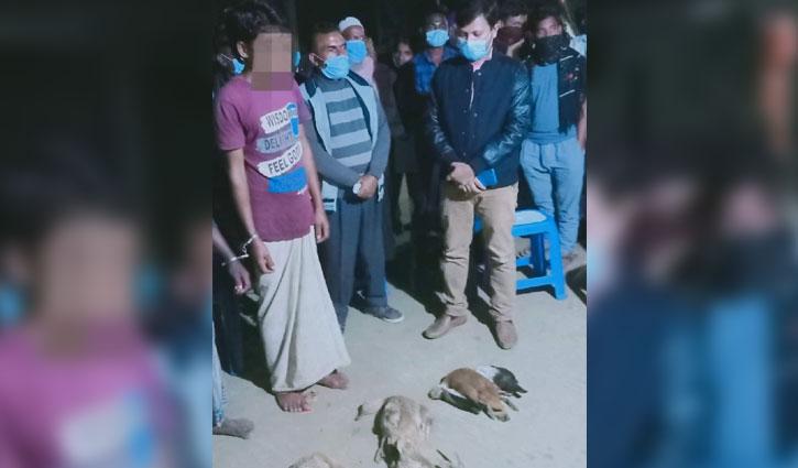 2 persons jailed for killing birds in Hakaluki haor