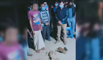 2 persons jailed for killing birds in Hakaluki haor