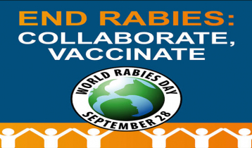 World Rabies Day 2020: All you need to know