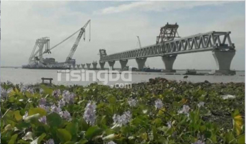 35th span of Padma Bridge installed, 5,250 meters visible