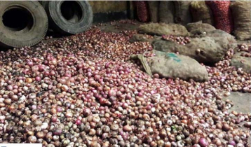Importers in trouble with rotten onions