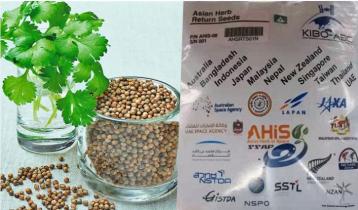 Bangladeshi coriander seeds going to space Dec 2