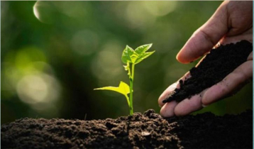 World Soil Day today