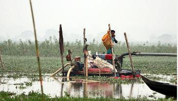 মুহুরী নদীতে ড্রেজার : বিপন্ন পরিযায়ী পাখিদের আশ্রয়স্থল