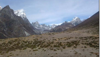 Plant life 'expanding over the Himalayas'