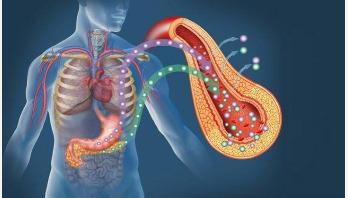 নতুন গবেষণা: করোনায় সুস্থ মানুষেরও ডায়াবেটিস হতে পারে