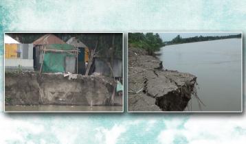 মানিকগঞ্জে নদী ভাঙনে হুমকিতে কয়েকশ স্থাপনা
