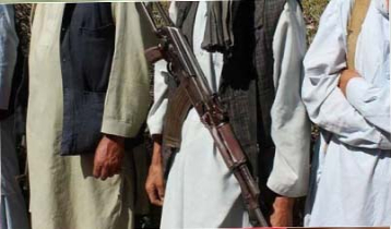 Afghan govt frees over 300 Talibans