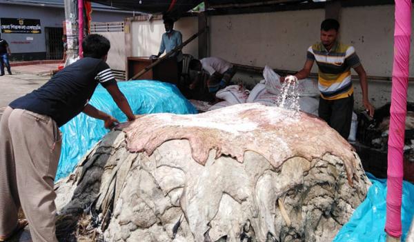 খুলনা নগরীর শেখপাড়া চামড়াপট্টিতে রাখা চামড়া